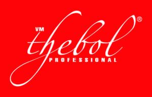 logo thebol 300x192 - THƯƠNG HIỆU MỸ PHẨM LỚN TẠI VIỆT NAM